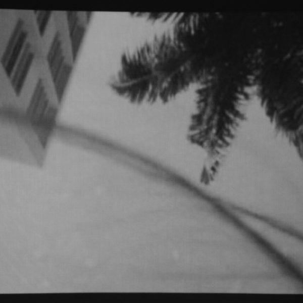 Caminho, 2004. Vídeo, 2'48''