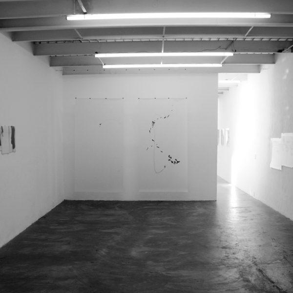 Exposição 'Eu fiz o nada aparecer', 2010. Galeria A Gentil Carioca, Rio de Janeiro, Brasil.