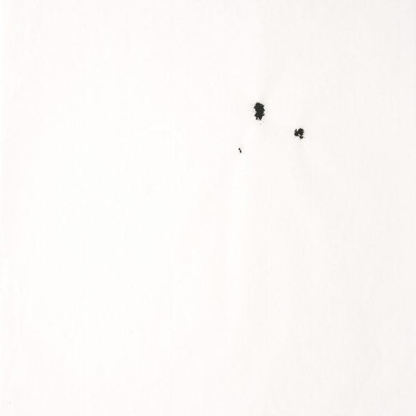 (Detalhe)- Diálogo (Sopro), 2008. Tinta preta sobre papel japonês. 34 × 23 cm cada. Políptico