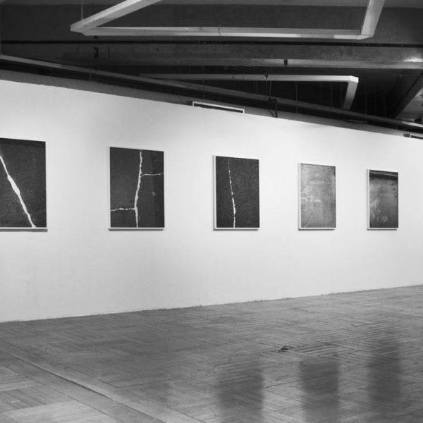 Exposição 'O lugar da linha', 2010. Paço das artes, São Paulo. Curadoria Felipe Scovino.