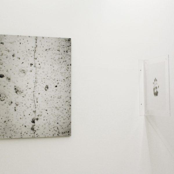 Exhibition 'O que vive é espesso', 2012. A Gentil Carioca Lá Gallery, Rio de Janeiro. Curated by Fred Coelho.