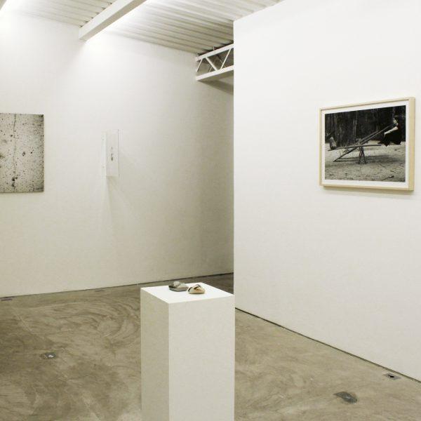 Exposição 'O que vive é espesso', 2012. Galeria A Gentil Carioca Lá, Rio de Janeiro. Curadoria Fred Coelho.