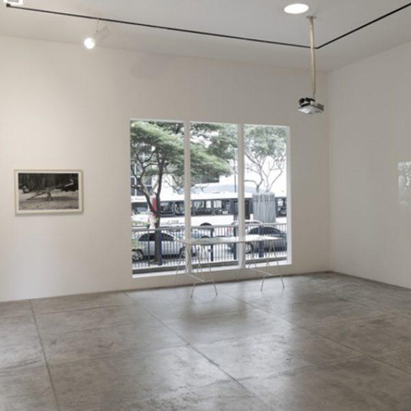 Exposição 'Situação de água', 2014. Galeria Marilia Razuk, São Paulo. Curadoria Luisa Duarte.