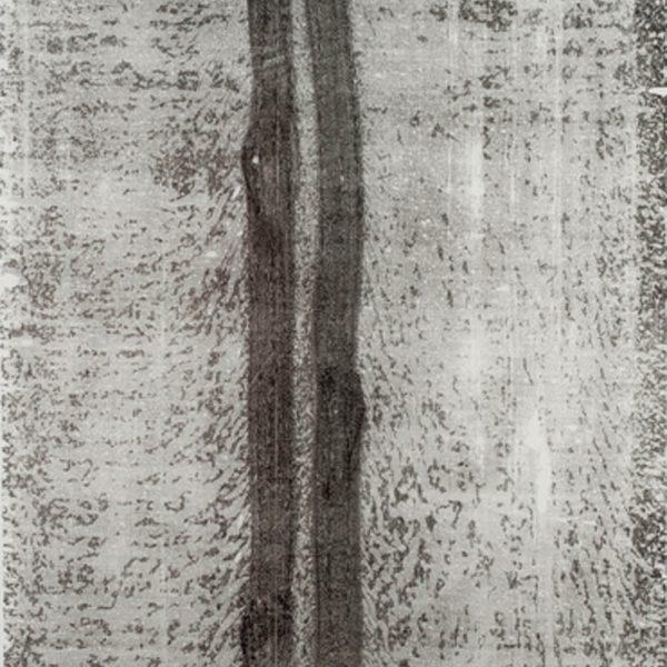 Caminho (10.03.15,2:20pm), 2015. Monotipia sobre papel japonês 230 x 100 cm