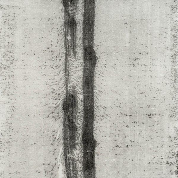 Caminho (26.03.15,3:00pm), 2015. Monotipia sobre papel japonês 230 x 100 cm