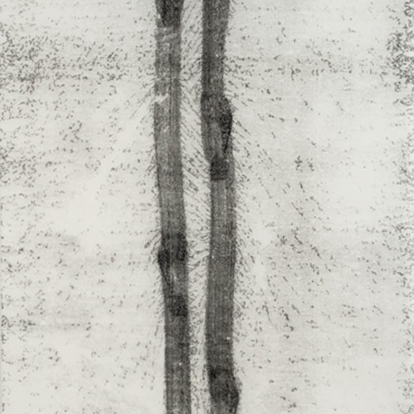 Caminho (26.03.15,4:10pm), 2015. Monotipia sobre papel japonês 230 x 100 cm