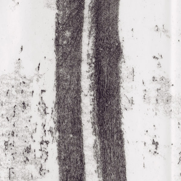 Detail- Walk, 2016. Monoprint on Japanese paper, 240 x 50 cm.