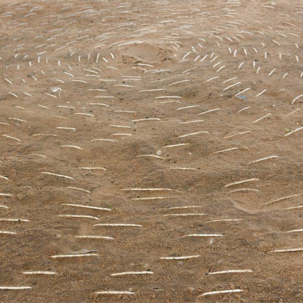 Terra (Canudos), 2015. Impressão a jato de tinta sobre papel algodão