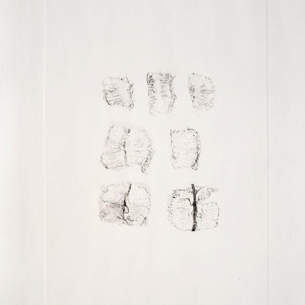 Sobre a pele de uma lima da pérsia, 2016. Gravura em metal sobre papel algodão, 36 x 27 cm.
