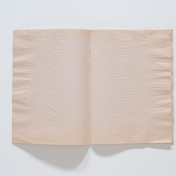 Daquilo que não se vê (IV), 2016. Vídeo, 55''/  Livro, 32 x 23,5 cm fechado, 32 x 46 aberto, 46 páginas