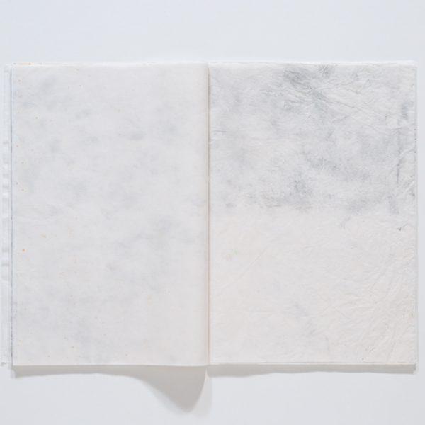 Daquilo que não se vê (V), 2016. Vídeo, 1'05'' / Livro, 35 x 24,5 cm fechado, 35 x 48,5 cm aberto, 60 páginas
