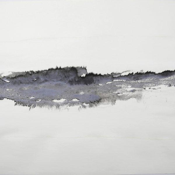 Atividade Interna, 2017. Tinta nankin sobre papel, 75 x 100 cm.