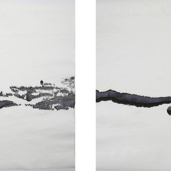 Atividade Interna, 2017. Tinta nankin sobre papel, 75 x 100 cm cada.