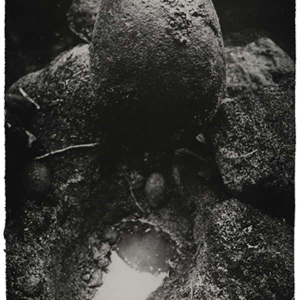 Untitled (Home), 2013/ 2018. Photogravure on cotton paper 98,5 x 65,5 cm
